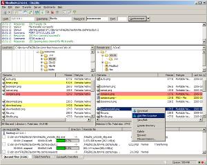 FileZilla 3.3.2.1